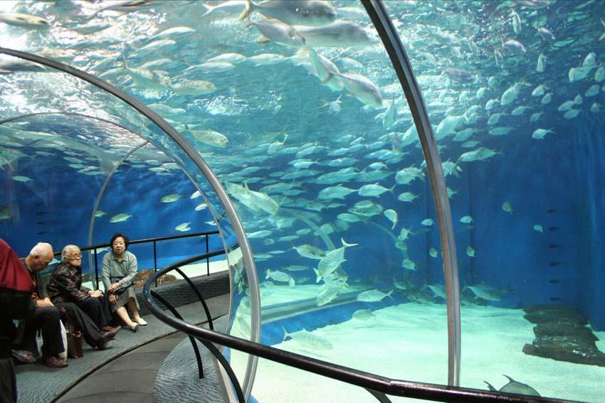 10 самых больших и экстремальных аквариумов в мире