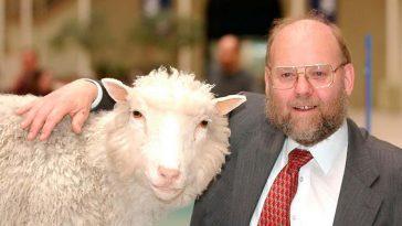 Клонирование животных -  За и против