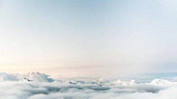 Лёгкие Мира. Откуда берётся кислород?