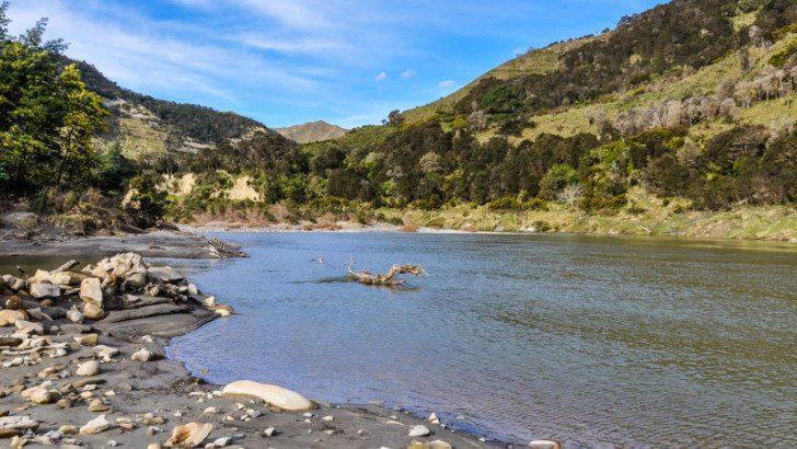 Новая Зеландия дала права человека реке!