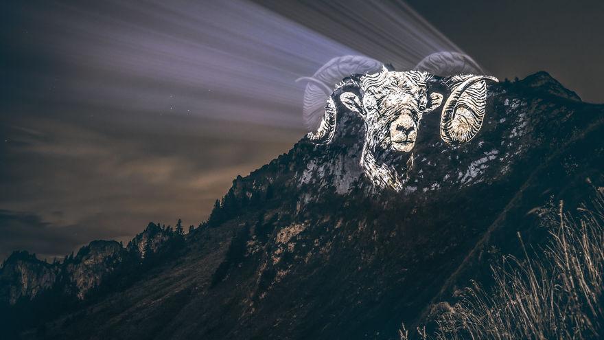 Фотопроект «Плачущие животные», который демонстрирует исчезающие виды животных
