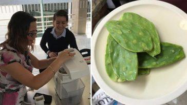 В Мексике изобрели биоразлагаемый пластик из кактуса, который пригоден для употребления в пищу.