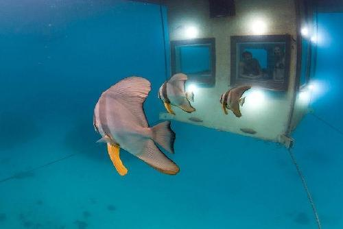 «Манта» Подводный отель в Занзибаре