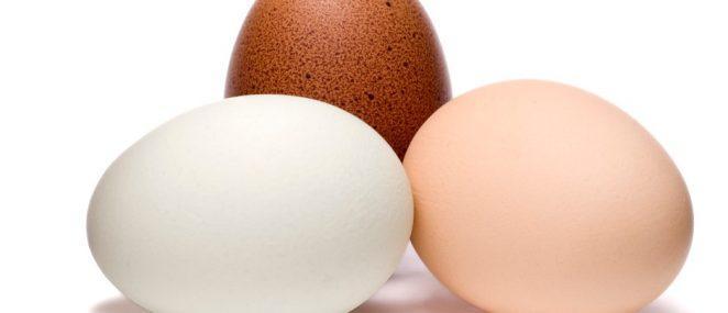 Почему куриные яйца белые или коричневые?