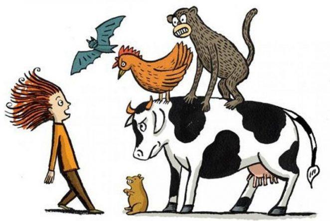 Может ли человек передать вирус животному?