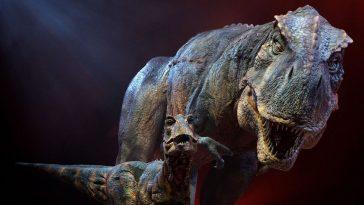 Сможем ли мы когда-нибудь клонировать динозавров?