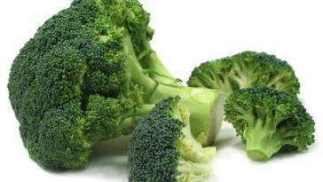 Польза брокколи для организма