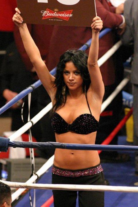 Ринг-гёрлз. Красивые девушки с табличками на ринге