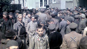 13 цветных фотографий жизни в концентрационных лагерях, которые никого не оставят равнодушным