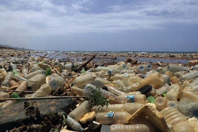 Конец эпохи пластика? Новые бутылки на растительной основе разлагаются за 1 год