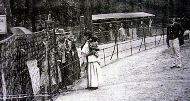 Человеческие зоопарки Европы - жирный след истории