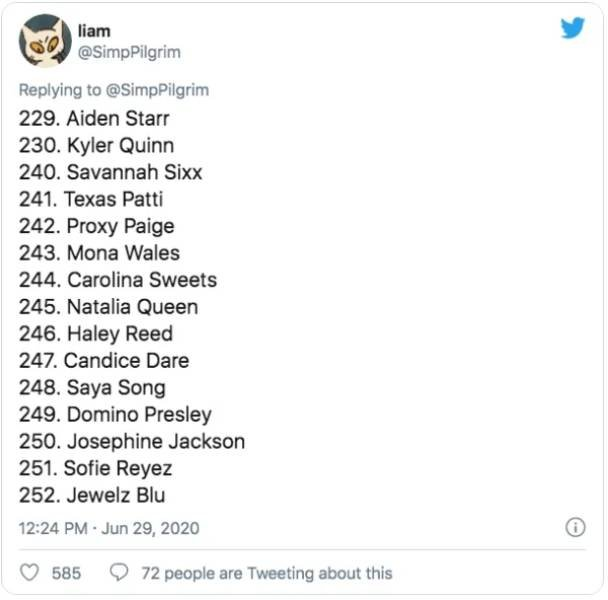 Этот парень составил рейтинг из 370 порнозвёзд (24 фото)