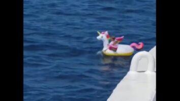 Экипаж парома спас 3-летнюю девочку, дрейфующую на надувном единороге