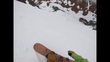 Необычный спуск собаки со склона горы