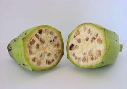 7 фотографий фруктов и овощей до и после селекции человеком!