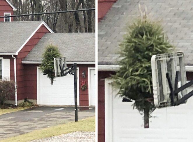 11 примеров соседей с которыми не соскучишься