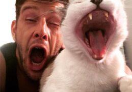 Сможете ли вы просмотреть эти фотографии не зевнув?