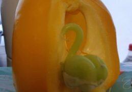 Чудо-фрукты и овощи, которые выросли на обычном огороде