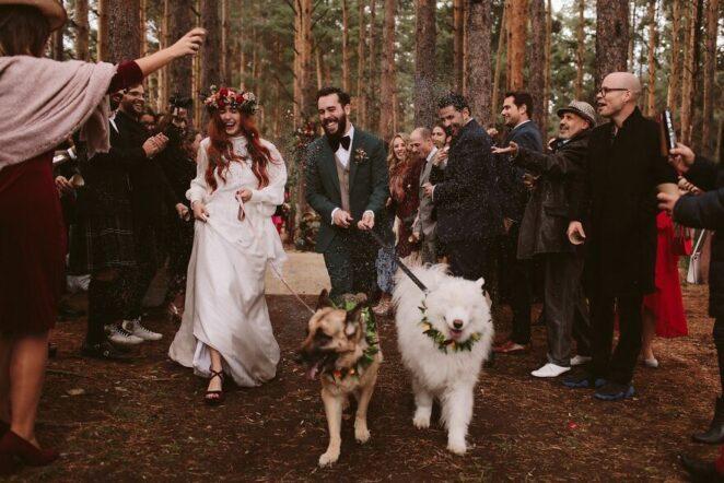 Самые красивые свадебные фото по версии Junebug Weddings